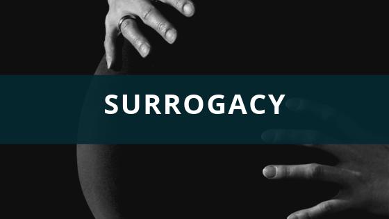 The Surrogacy Process